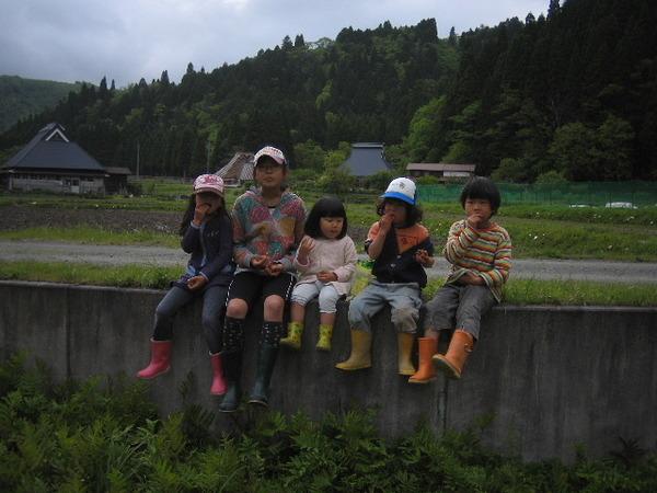 2010_30_033