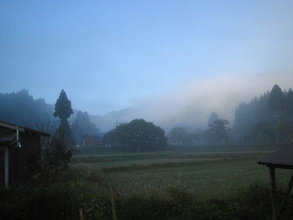 20101104_001_001