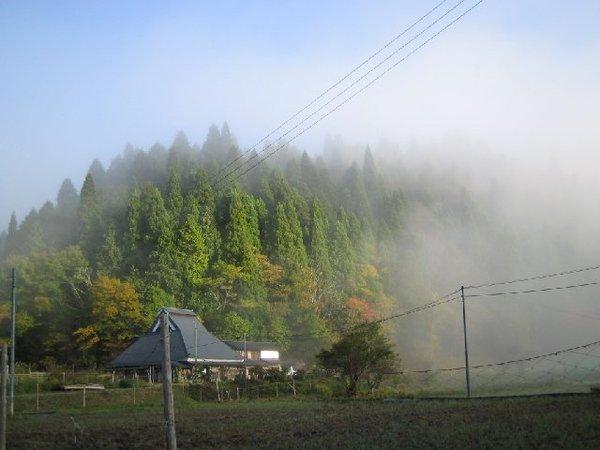 20101104_001_005