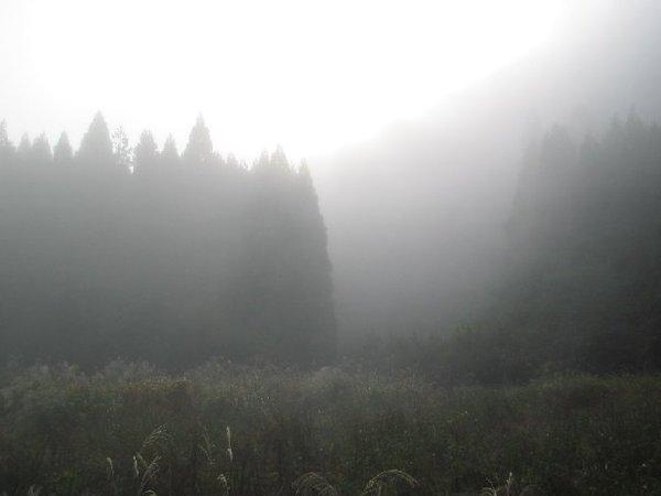 20101104_001_034