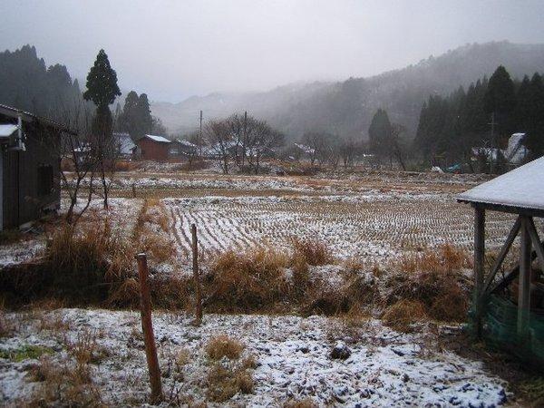 20101210_002_005