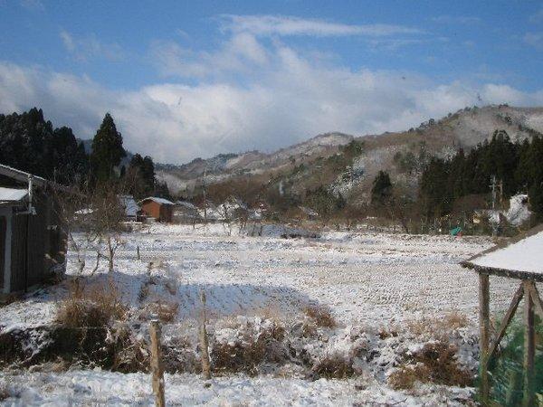 20101225_003_001