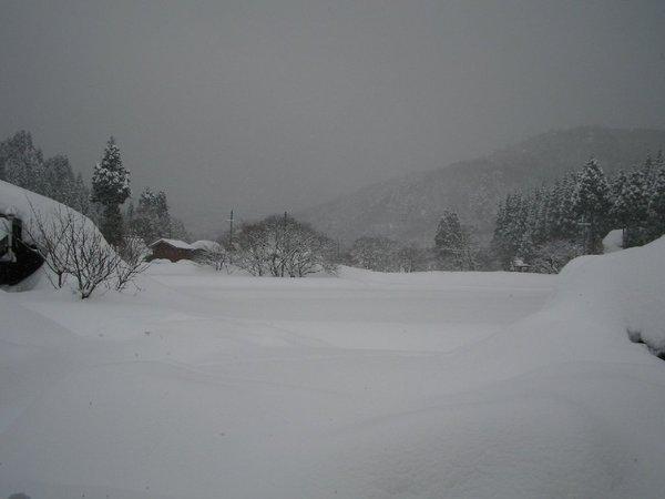 20110125_002_001