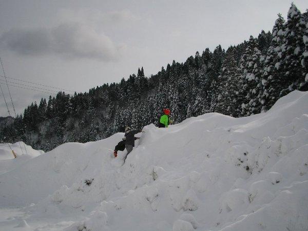 20110129_001_012