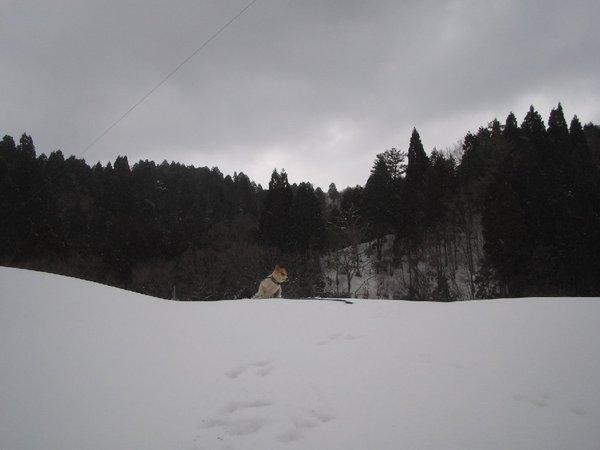 20110212_002_003