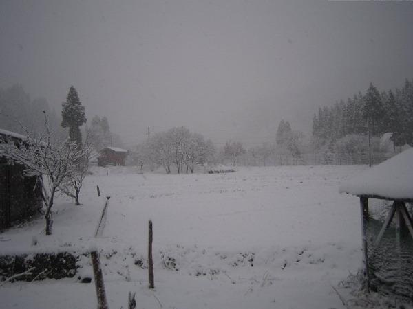 20111209_001_008