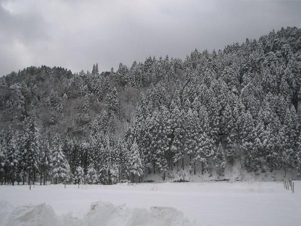20111224_001_008
