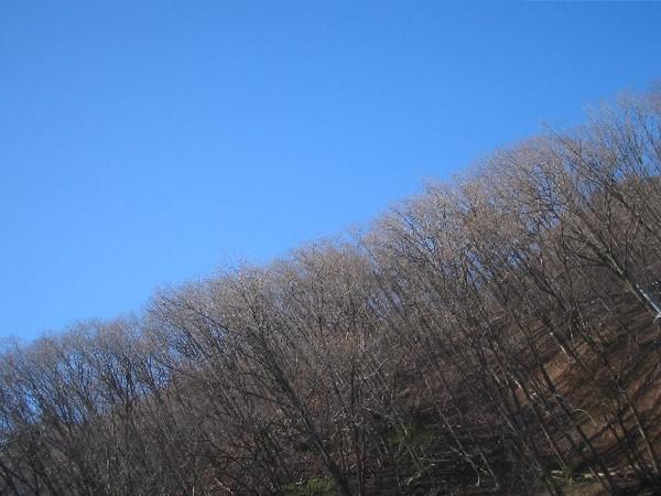 20120427_001_011