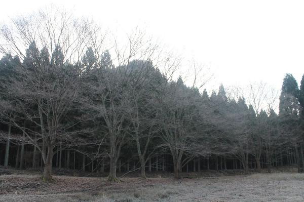 20131209_001_008
